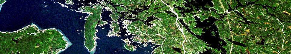 Honey Harbour satellite image