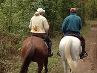 Couple riding horses together