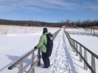 Wye Marsh Boardwalk in Winter
