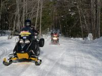 Snowmobiles from Diverse Rentals