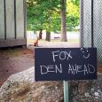 Foxden fox Honey Harbour Muskoka life wildlife