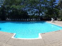 Outdoor Swimming Pool - Delawana Resort